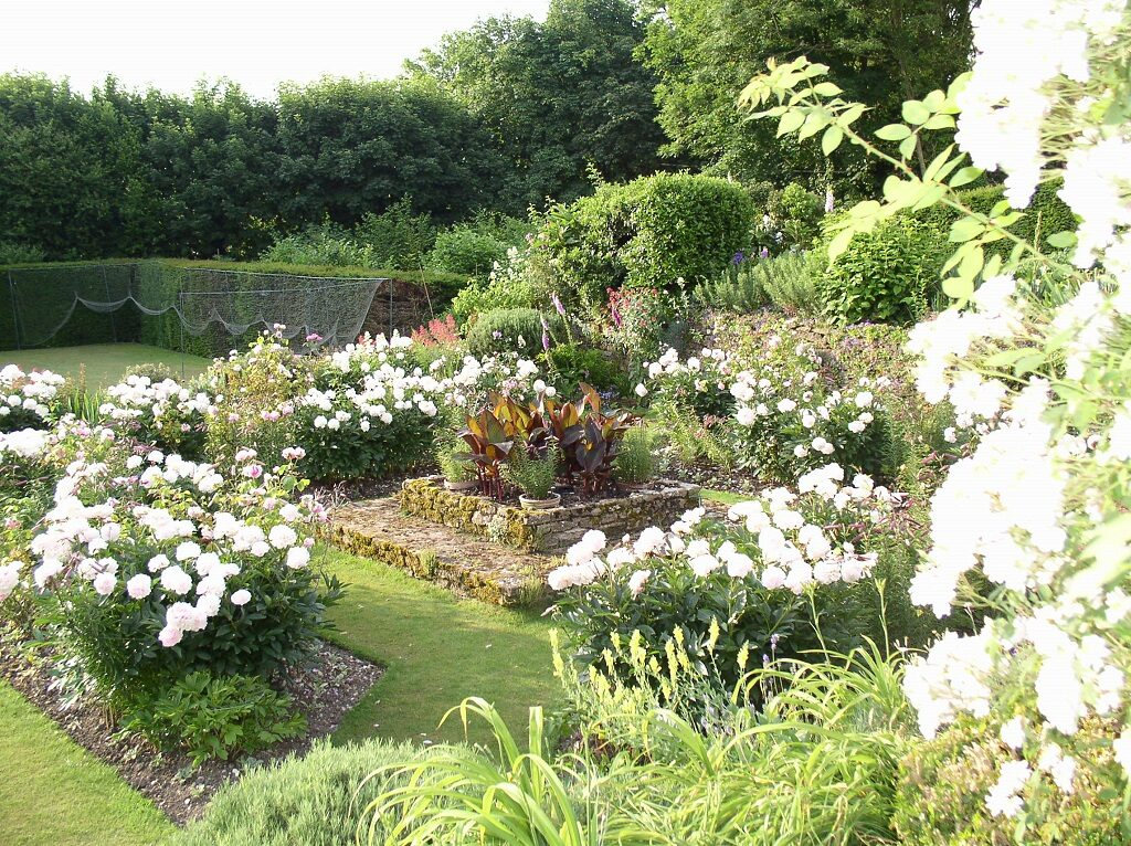 Rose Garden 2019