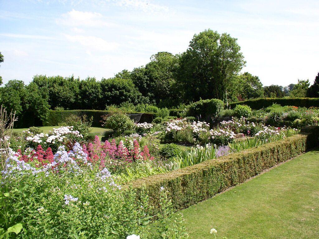Overlooking the Rose Garden 2019